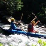 Top 5 things to do on TripAdvisor in Tamarindo